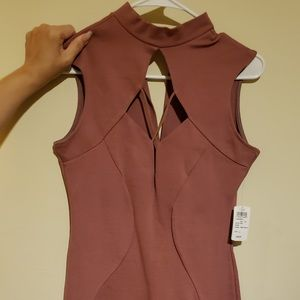 Just In!  NWT!  Gorgeous Mauve Windsor Dress
